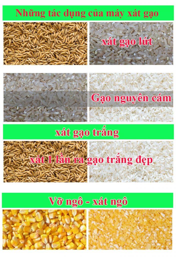 Sản phẩm của máy xát gạo mini Ưu Nông